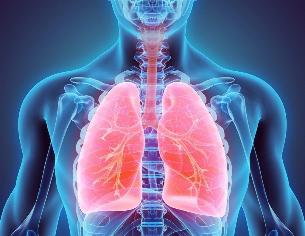 Longen, astma en luchtkwaliteit.