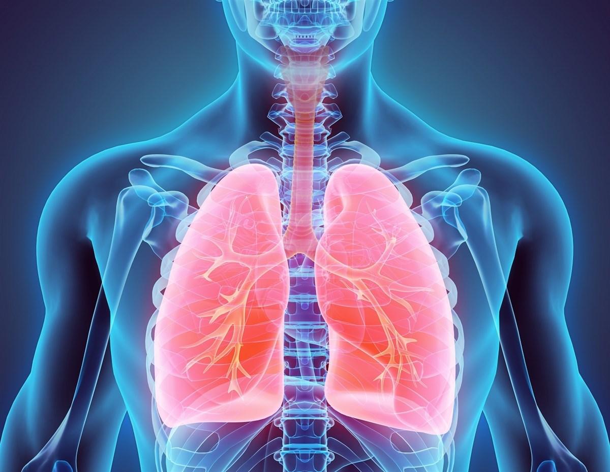 Astma en luchtkwaliteit